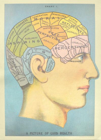 Affiche vintage  TETE CERVEAU Dimensions : 70 x 50 cm